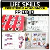 Life Skills Independent Work Task Binders Sample FREEBIE
