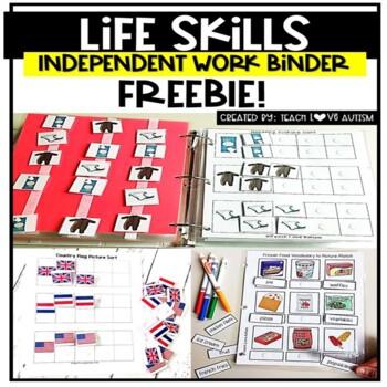 Life Skills Independent Work Tasks Sample FREEBIE