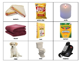 Special Education: Items that Use Electricity vs. Items that Don't
