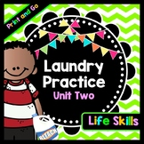Life Skills Reading and Writing: How to Do Laundry - Clothing Tags