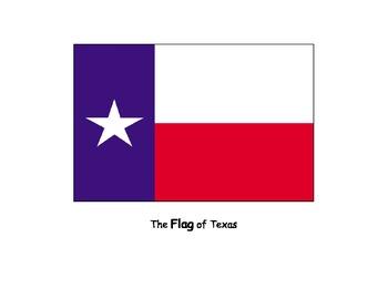 Life Skills: Texas (Book)
