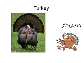 Special Education: Thanksgiving Icons - Power Point