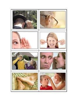 Life Skills: The Five Senses