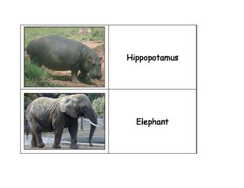 Life Skills: Zoo Animals