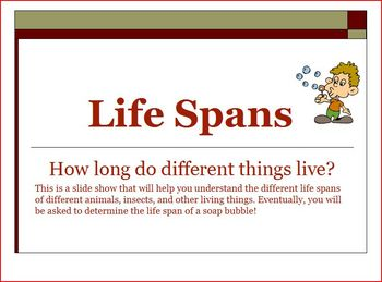 Life Spans of Animals, Humans Insects Powerpoint Math Activity