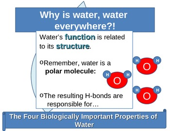 Life Sustaining Properties of Water animated PowerPoint