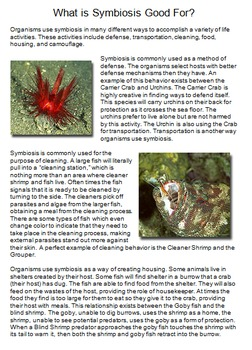 """""""Life"""" (The Discovery Series) Creatures of the Deep Worksheets"""