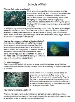 """""""Life"""" (The Discovery Series) Fish Worksheets"""