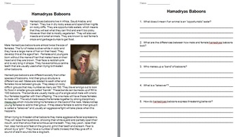 """Life"" (The Discovery Series) Primates Worksheets"