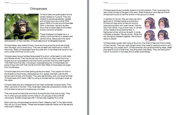 """""""Life"""" (The Discovery Series) Primates Worksheets"""