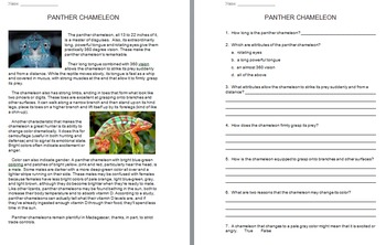 """""""Life"""" (The Discovery Series) Reptiles and Amphibians Worksheets"""