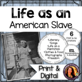 Life as an American Slave Interactive Stations