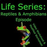 Life (The Discovery Series) - Reptiles & Amphibians