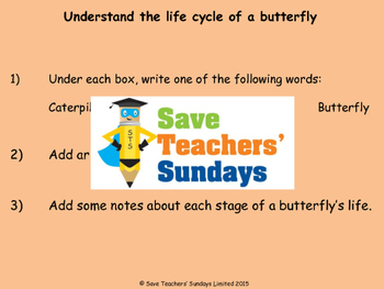 Life cycle of a butterfly Lesson plan and Worksheet