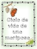 Life cycle of a butterfly in SPANISH -Ciclo de vida de una