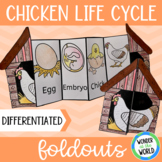 Life cycle of a chicken foldout for interactive notebook