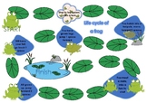 Life cycle of a frog game