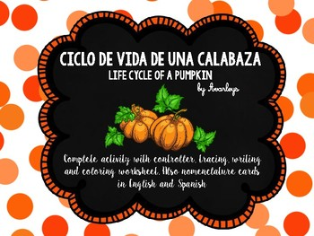 Life cycle of a pumpkin ~ English and Spanish