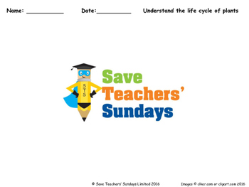 Life cycle of flowering plants Lesson plan and Worksheets