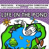 Life in a Pond (5-day Thematic Unit)