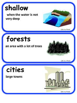 ReadyGen Life in a Pond Vocabulary / Kindergarten, Unit 1, module B