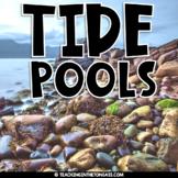 Tide Pool | Ocean Animal Activities | Ocean Activities