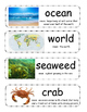 Life in an Ocean vocabulary cards