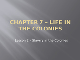 Life in the Colonies - Slavery in the Colonies PowerPoint