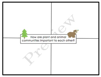 Life in the Forest Graphic Organizers & Writing Activities (Reading Street 2.5)