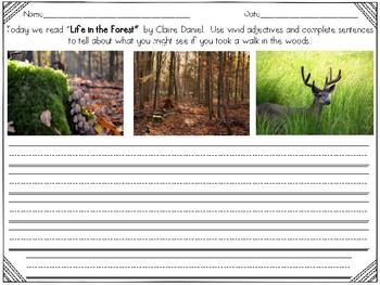 Life in the Forest Reader's Response