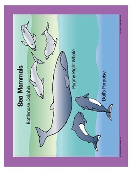 Life in the Ocean: Marine Mammals