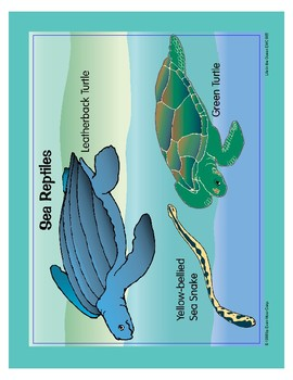 Life in the Ocean: Sea Reptiles