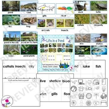 Life in the Pond Text Companion Picture Vocabulary Cards and Sorting Activity