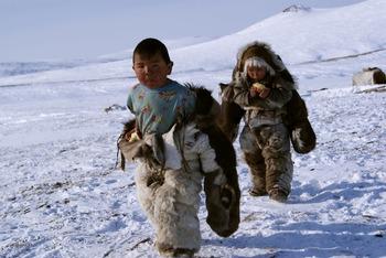 Life in the Tundra Activity
