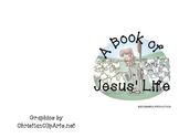 Life of Jesus Book
