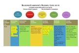 Life of Pi activity matrix