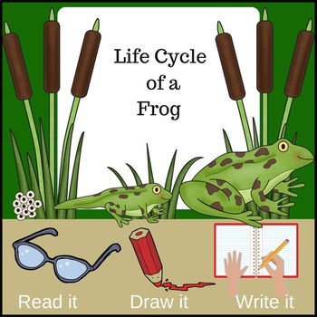 Life of a Frog ~ Read it! Draw it! Write it! (Life Cycle of a Frog)