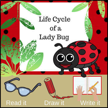 Life Cycle of a Ladybug ~ Read it! Draw it! Write it!