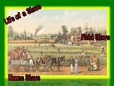 Slavery: House & Field Slaves (6 of 9) Common Core, Constructed Response