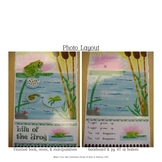 Life of the Frog Interactive Book, Printable in Full Color!