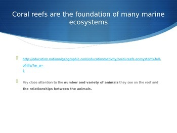 Life on a Coral Reef