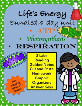 Life's Energy, ATP, Photosynthesis and Respiration 4 Day B