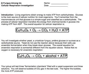 Life's Energy, Respiration Lab (A Fungus Among Us)