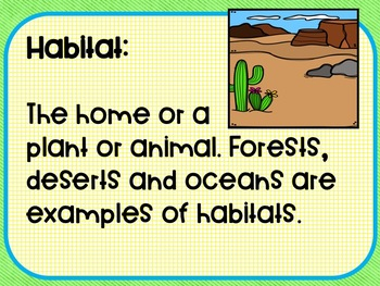 Life science ecosystems 3rd-5th grades vocabulary word wall cards