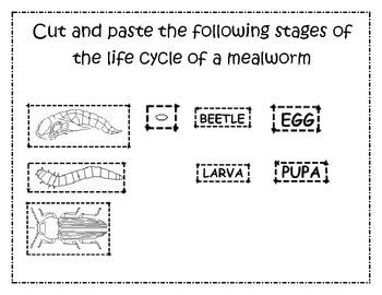 mealworm worksheets for preschool alphabet mealworm best free printable worksheets. Black Bedroom Furniture Sets. Home Design Ideas