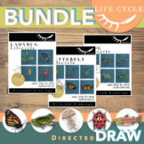 Life Cycle Activity Directed Drawing BUNDLE Digital Learning
