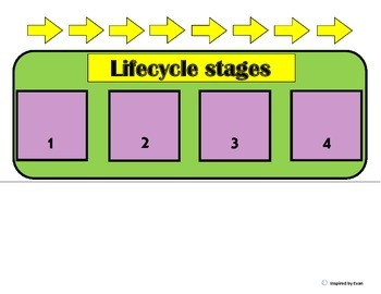 Lifecycle Sequence Boards for Autism