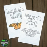 Lifecycle of a Butterfly Children's Book
