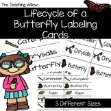 Lifecycle of a Butterfly Labeling Cards