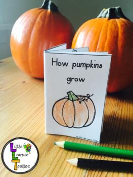 Pumpkin Lifecycle Emergent Reader